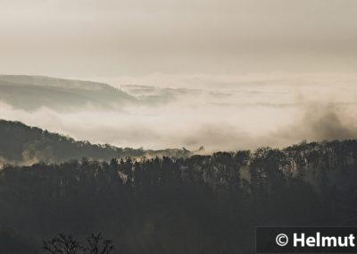 Licht_Siebengebirge 1_1